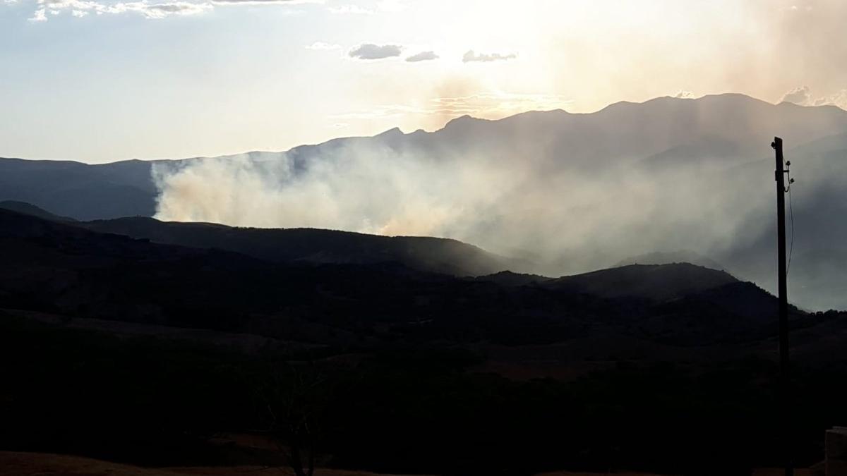 Tunceli'de çıkan yangın için yardım çağrısı: Günlerdir devam ediyor, söndüremiyoruz