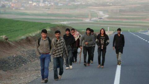 ABD'den yeni Afgan mülteci programı: 50 bin kişi gidecek