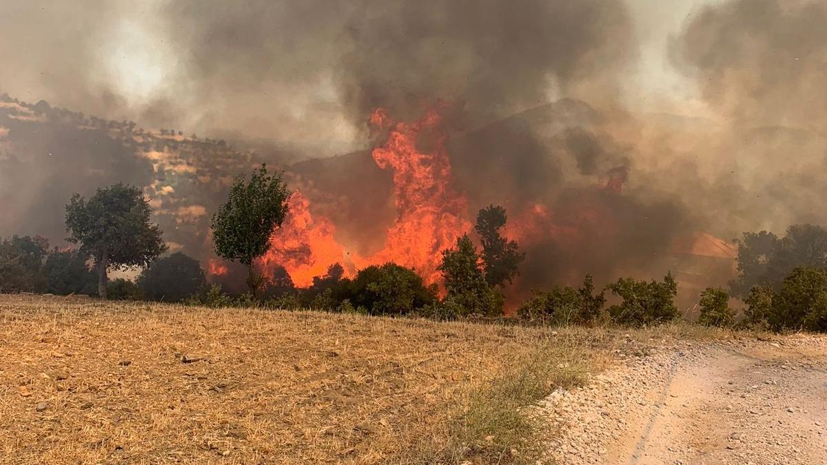 Muğla'da iki ayrı yangın daha