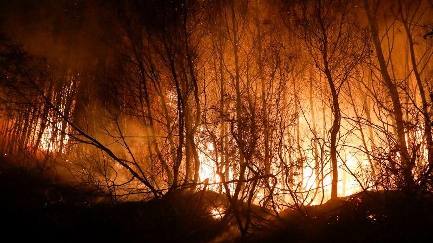 Avrupa yangınla mücadele ediyor: 800'den fazla yangın - Son dakika dünya haberleri