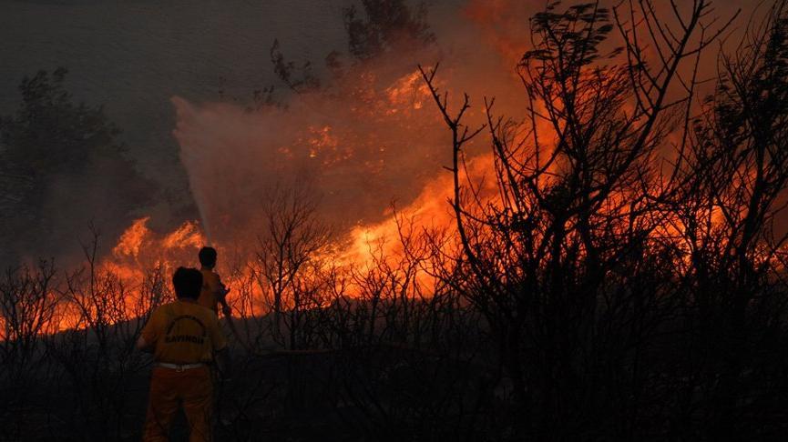 Mimarlar Odası'ndan orman yangınlarıyla ilgili açıklama