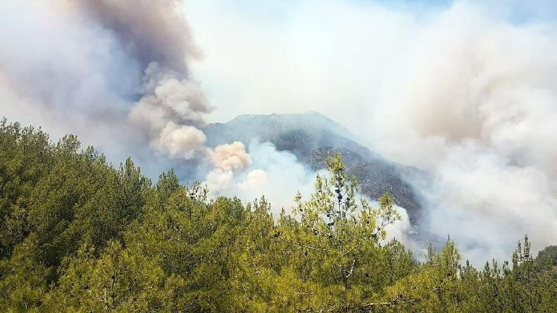 Köyceğiz'de yangın ilerliyor 2 mahalle boşaltılıyor