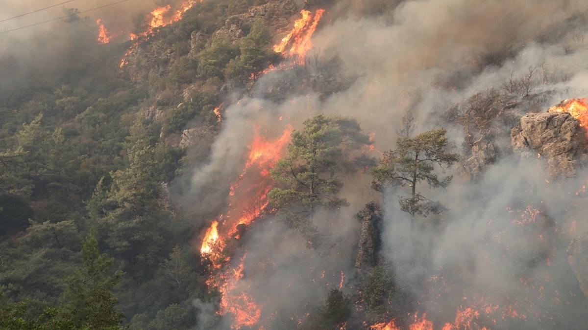 Orman yangınlarında son durum! Başkanlar anlatıyor...