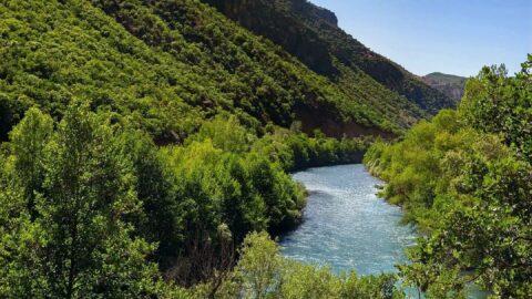 Tunceli'de ormanlara giriş yasaklandı