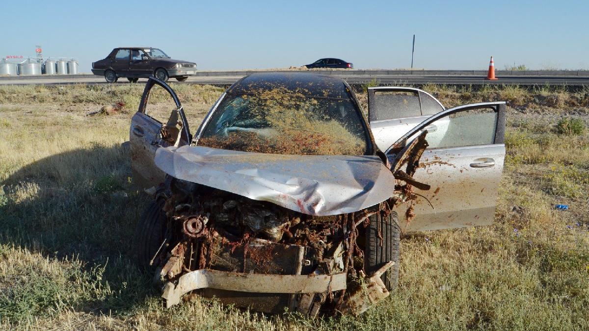 Otomobil sürüye daldı: Çoban öldü, 17 koyun telef oldu