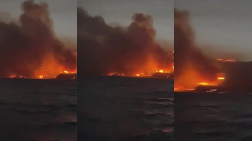 Milas Belediye Başkanı: Alevler termik santralin dibine geldi