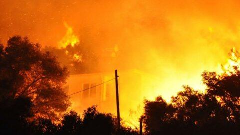 Milas yangını, Türkevleri'ne sıçradı