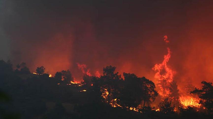 Orman Genel Müdür Yardımcısı Özkaya: Büyük yangınlarımız aynı anda oldu