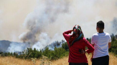 The Guardian'dan Türkiye'deki orman yangınlarıyla ilgili yorum: Hükümete öfke artıyor