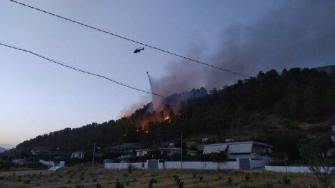 Arnavutluk'ta 12 farklı noktada yangın