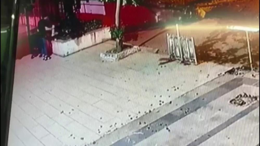 Sokak kedisini yerden yere vurup öldürdü