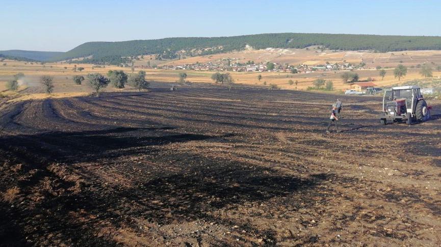 Tarladaki yangın, ormana ulaşmadan söndürüldü