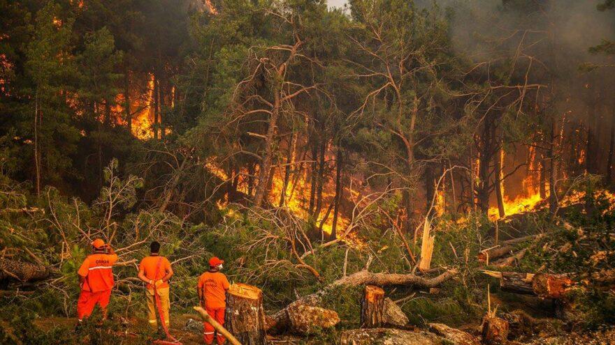 Avrupalı bilim insanlarından korkutan yangın açıklaması