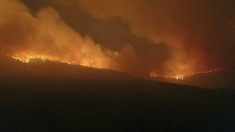 Menteşe'de 2 köy daha boşaltıldı, alevlerin sardığı bölge kızıla büründü