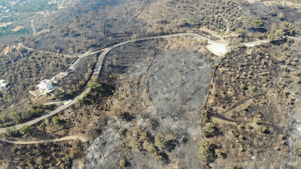 Muğla'daki yangınlarda son durum! Kaç hektar alanın kül olduğu açıklandı