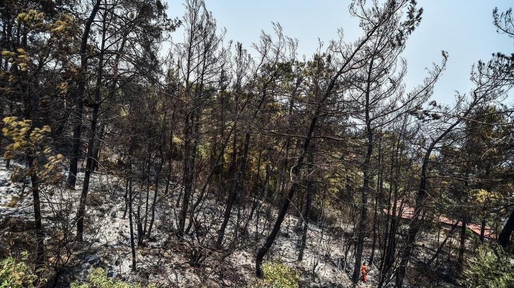 Marmaris'te siteye kadar inen yangında faciadan dönüldü