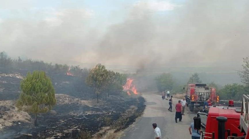 Yıldırımlar 4 noktada orman yangınına neden oldu