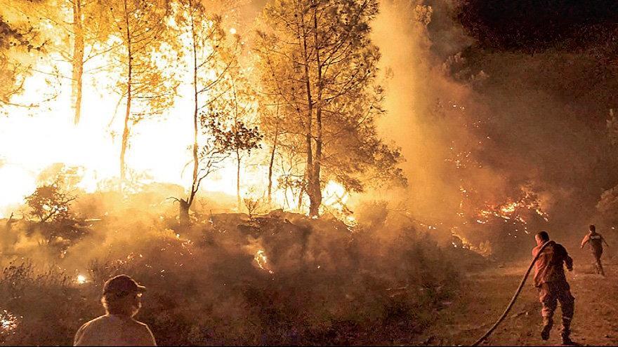 Her gün 7 orman yangını çıkıyor...