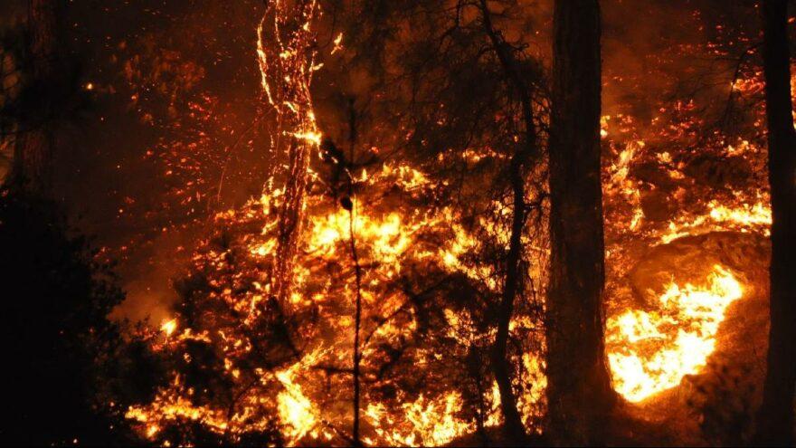 Milas'taki yangın 7'nci gününde Gürceğiz Mahallesi'nde onlarca ev kül oldu