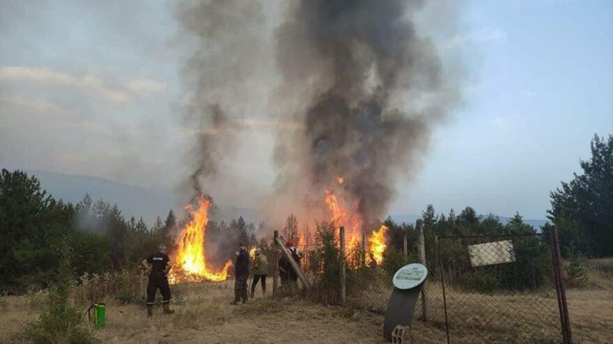Kuzey Makedonya'da yangınlara karşı ordu seferber oldu