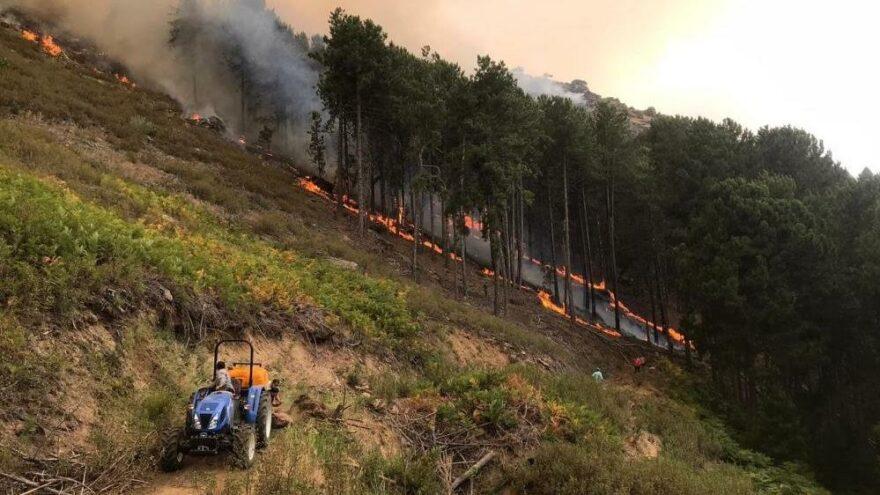 Aydın'daki yangınlardan biri kontrol altına alındı
