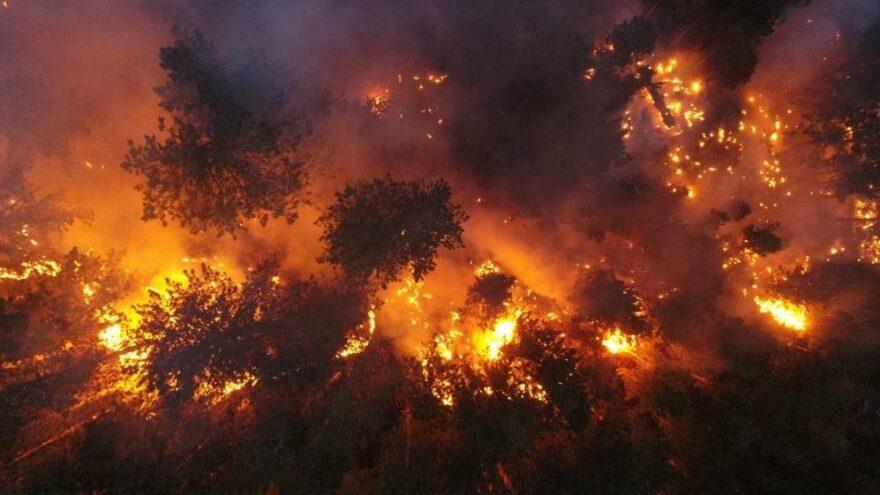 İletişim Başkanlığı açıkladı: İşte Türkiye'deki orman yangınlarında son durum