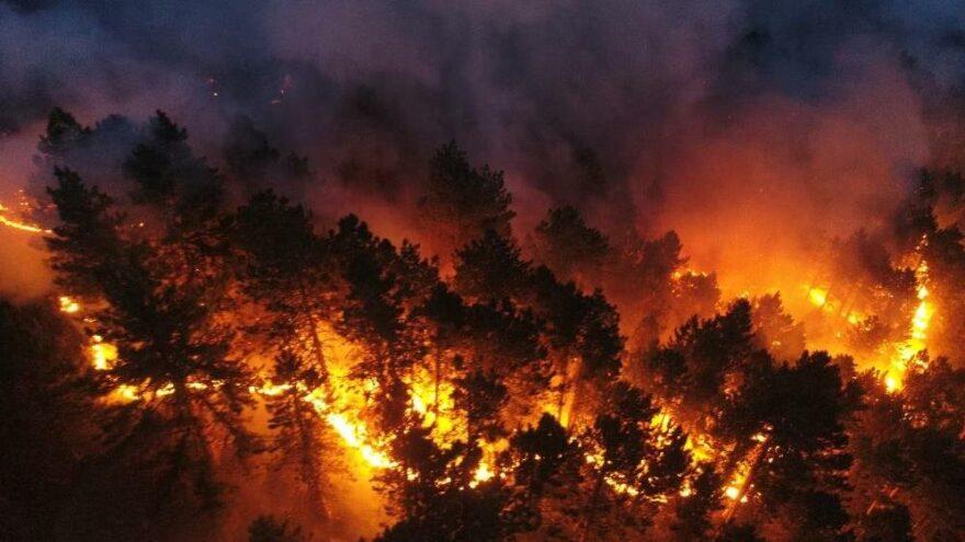 Polonya'dan yangınla mücadele eden Türkiye'ye destek