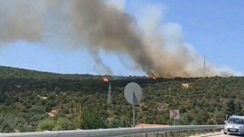 Tunç Soyer: Urla yangını kontrol altına alındı