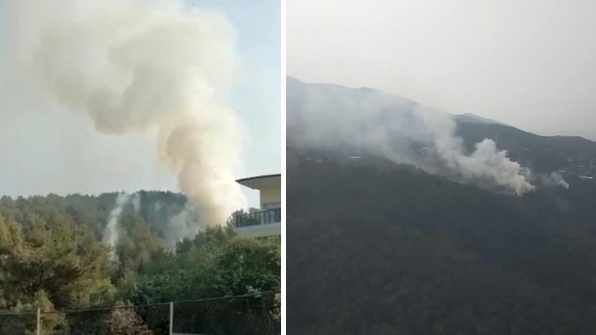Hatay'da orman yangını çıktı