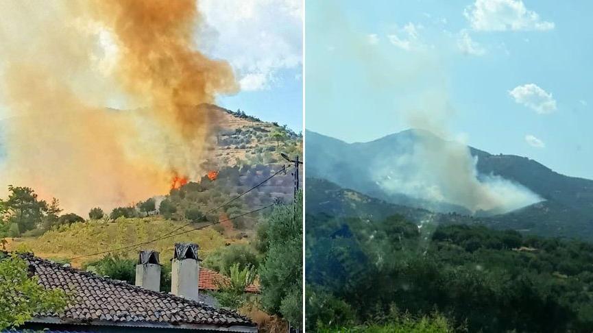 Karacasu'da zeytinlik yangını! Alevler ormanı tehdit ediyor