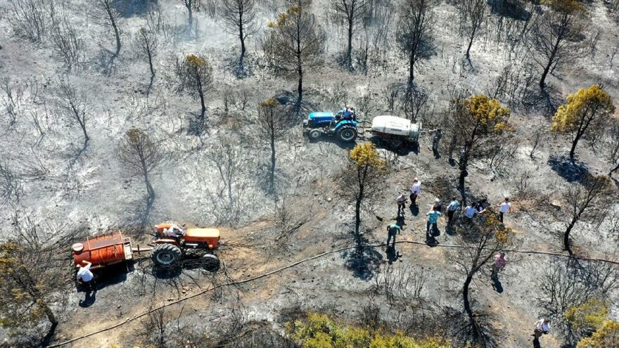 Aynı mevkide 4 yangın çıktı! Belediye başkanı isyan etti