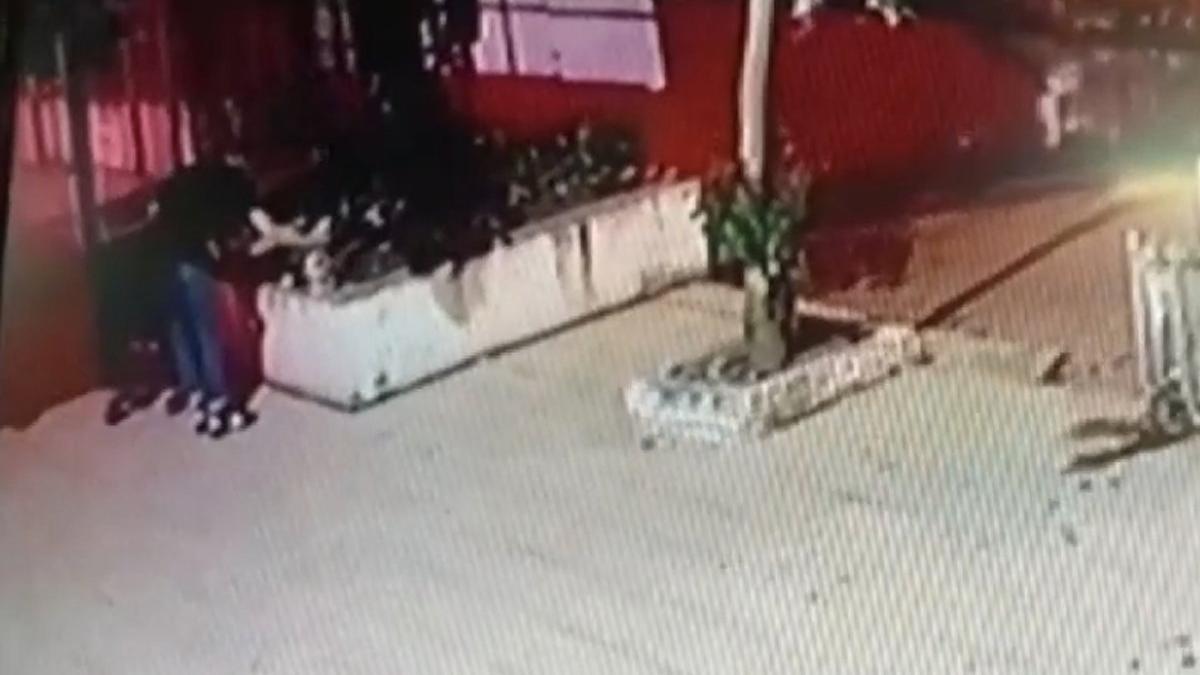Kediyi yerden yere vurarak öldüren şüpheli tutuklandı