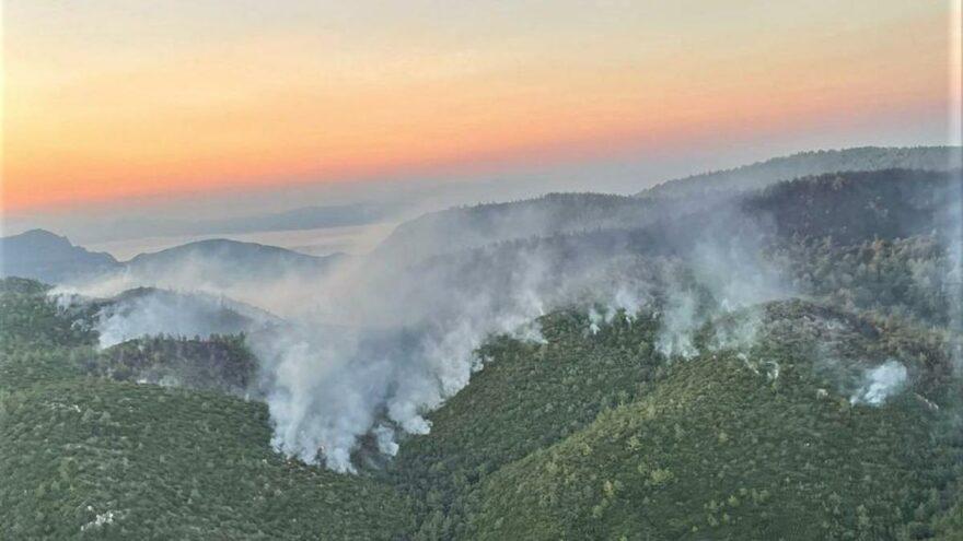 Muğla'da orman yangınları 11'nci gününde