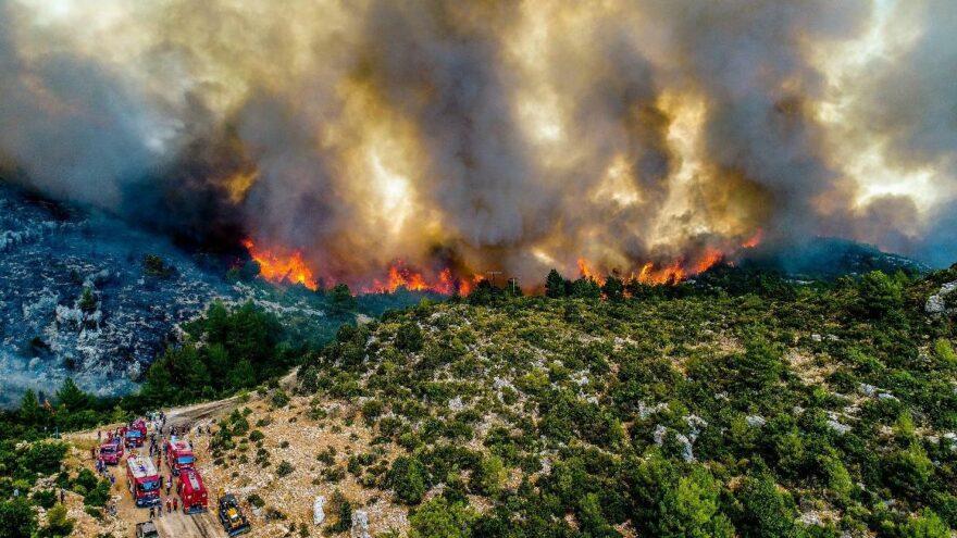 İşte Manavgat yangınının bilançosu: 60 bin hektar kül oldu, en az 1 milyar TL kayıp
