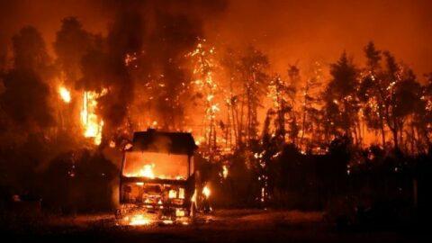 Komşuda yangının bilançosu ağırlaşıyor: Kabus gibi bir yaz...