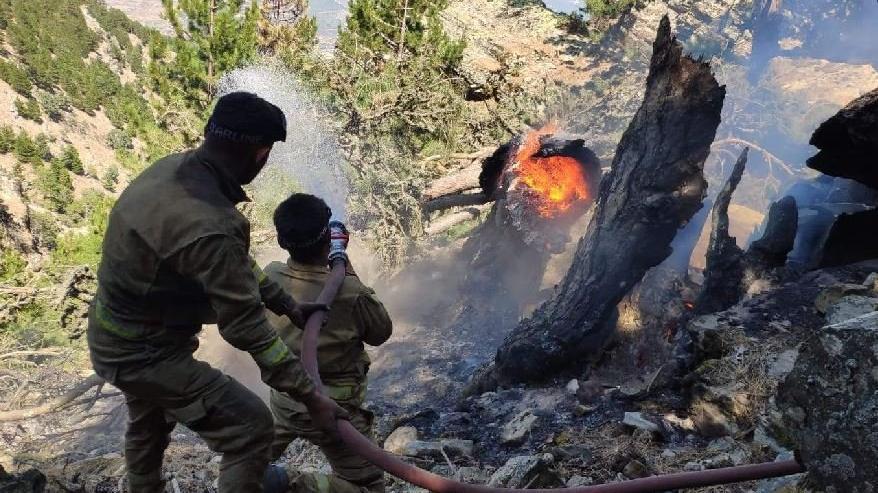 Aydın'daki yangın 7. gününde