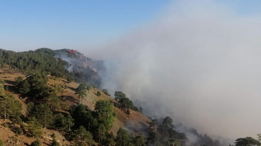 Köyceğiz'de yangın 12 gündür sürüyor! Alevler büyüdü