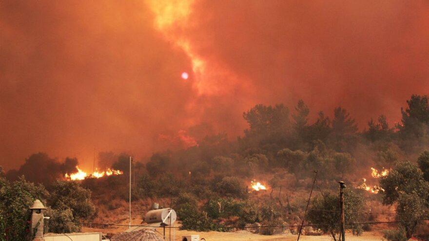Muğla'da orman yangınlarının bilançosu ortaya çıktı