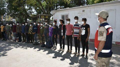 Kaçak göçmenler mısır tarlasında yakalandı