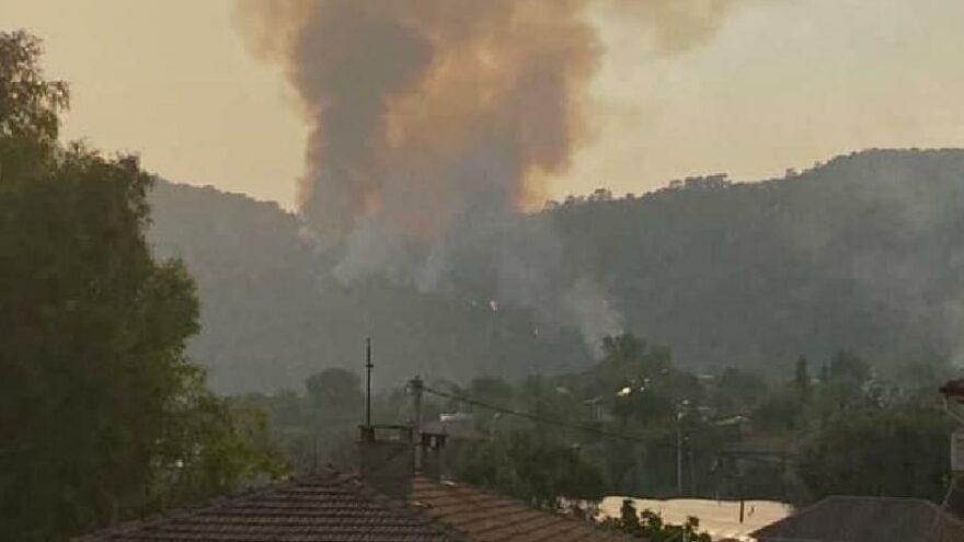 Muğla'da bir orman yangını daha