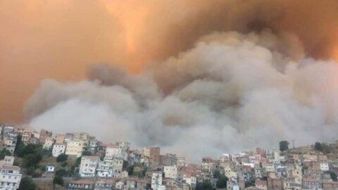 Cezayir'de yangın 14 eyalete sıçradı: Ölü sayısı artıyor