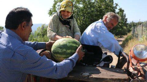 Yetiştirdiği meyve ve sebzeleri herkese ücretsiz dağıtıyor