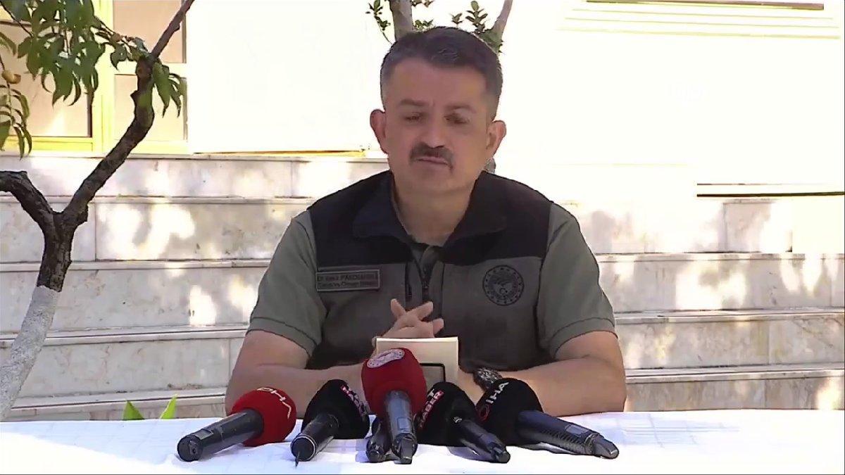 Pakdemirli açıkladı: Milas'taki yangın kontrol altına alındı