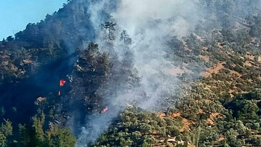 Bozdoğan yangını kontrol altına alındı