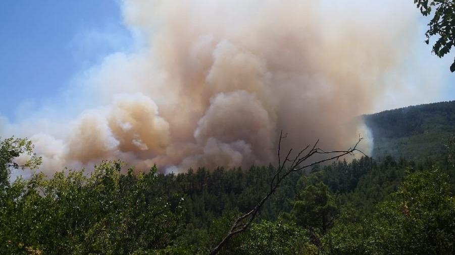 Burdur'da 3 mahalleyi etkileyen orman yangını çıktı
