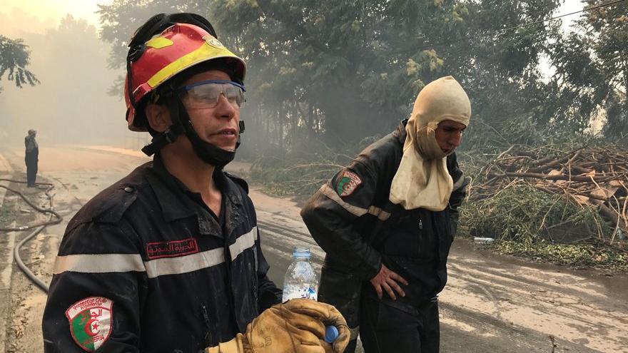 Cezayir'de orman yangınlarından ölenlerin sayısı artıyor