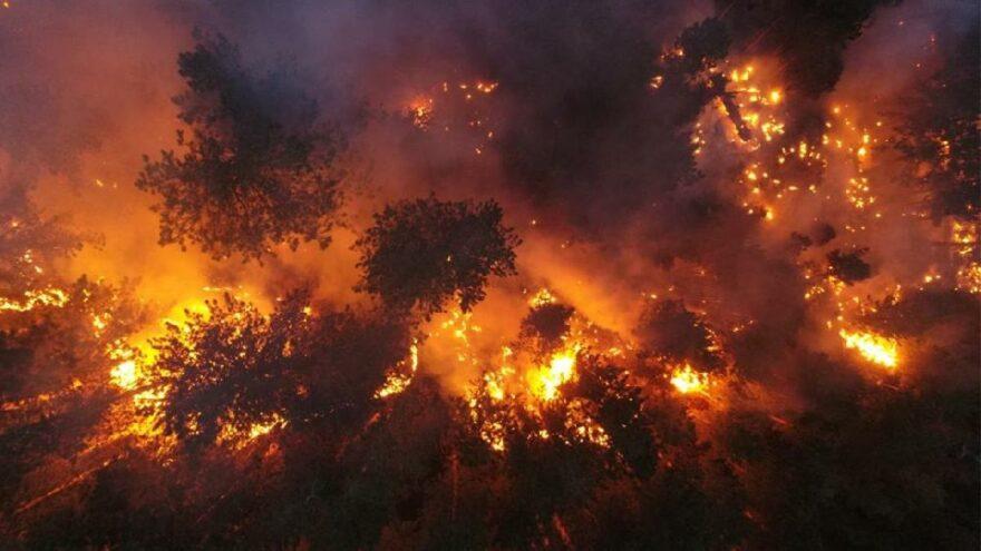 14 gündür devam ediyordu! Köyceğiz yangını kontrol altına alındı