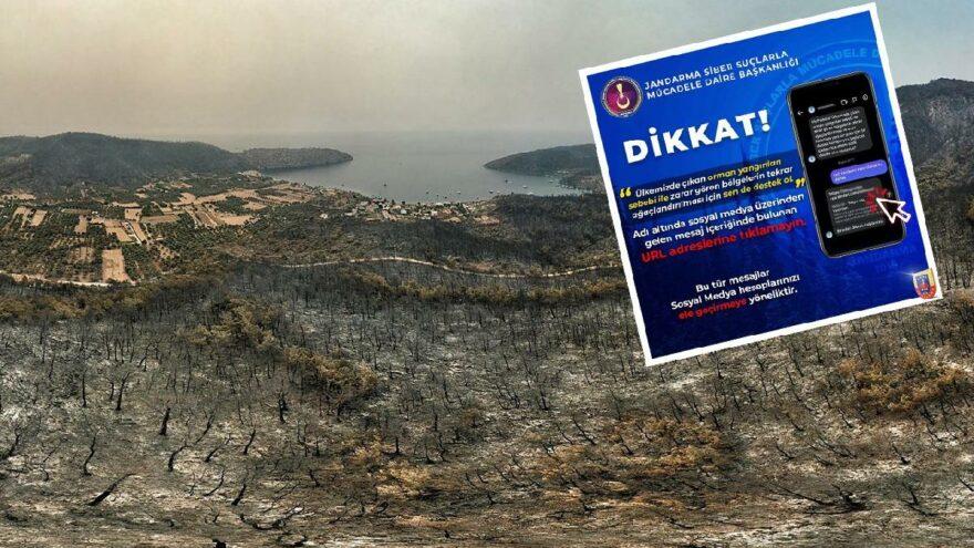Sosyal medyadaki 'ağaç bağışı' çağrıları için uyarı