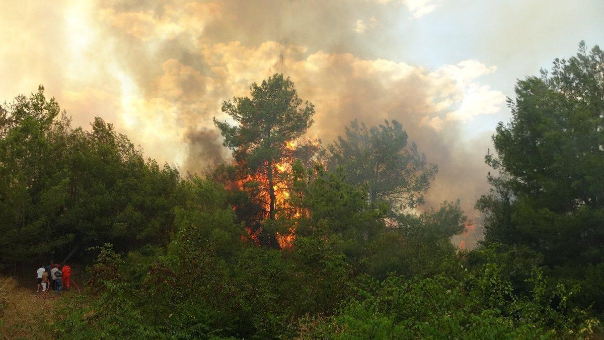 ÇYDD'den yangın bölgelerine destek