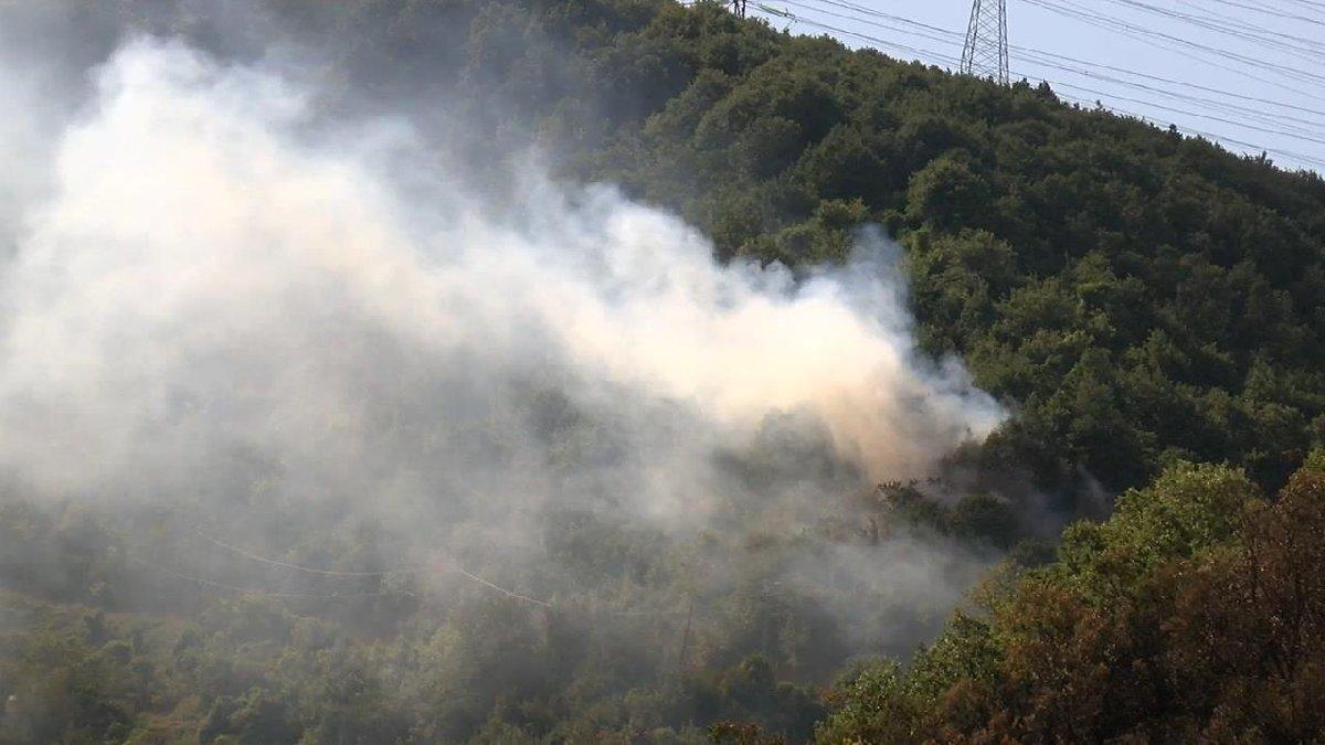 Sarıyer'de aynı bölgede üç günde üçüncü yangın